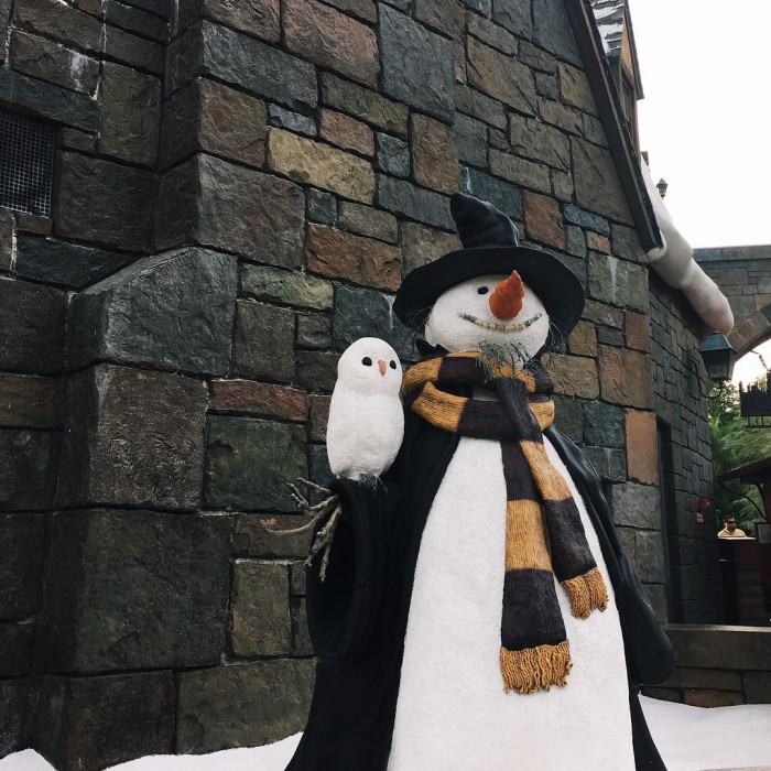 Snowman goals for this winter
