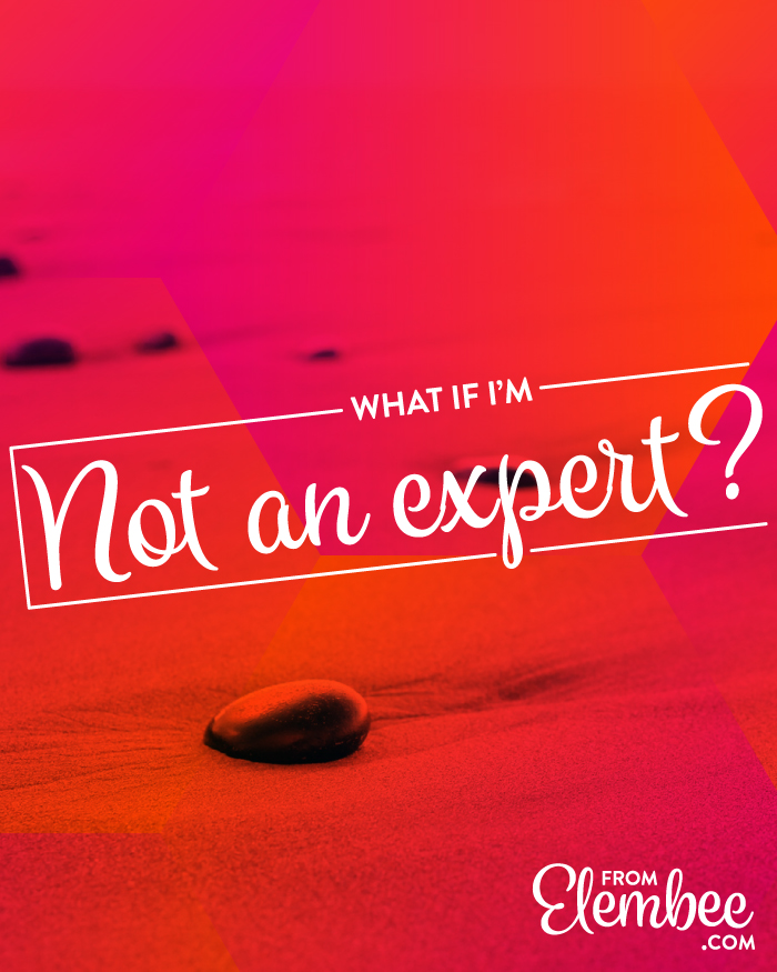 What if I'm not an expert? from elembee.com